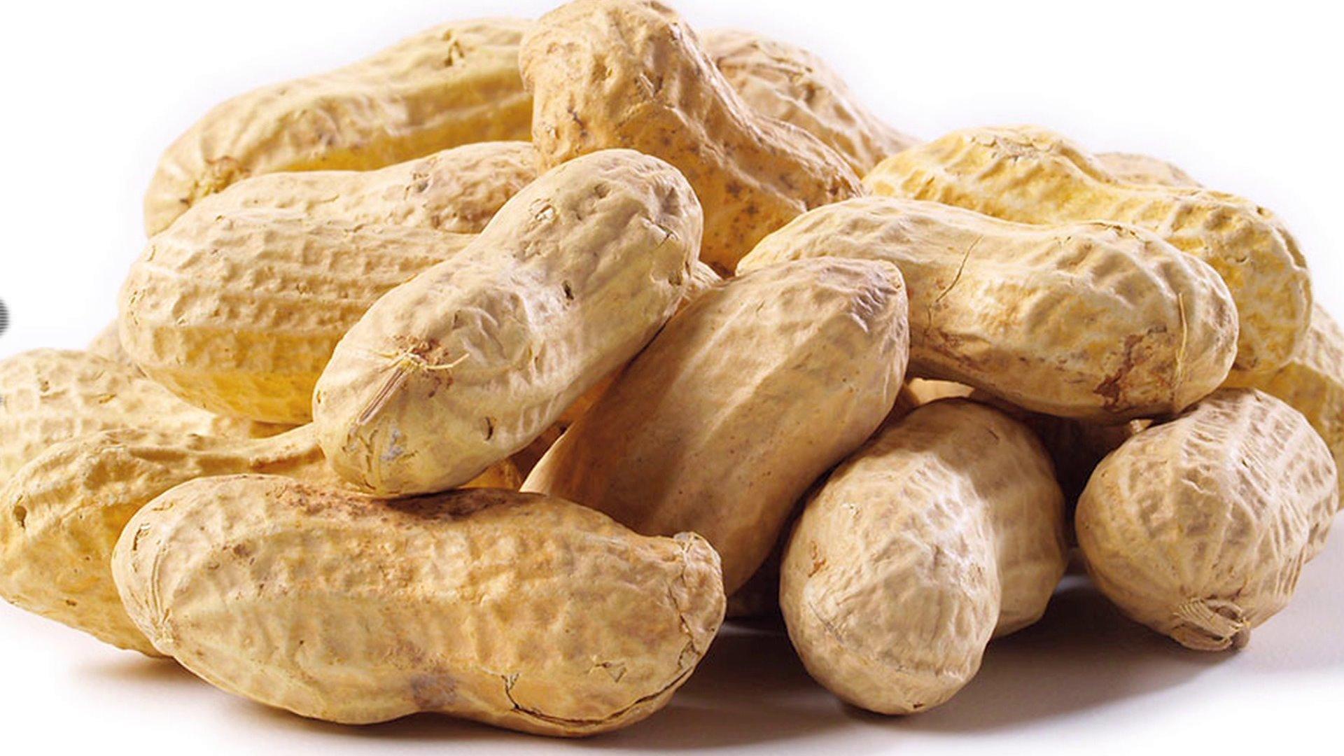 Khasiat dan Manfaat Kacang Tanah