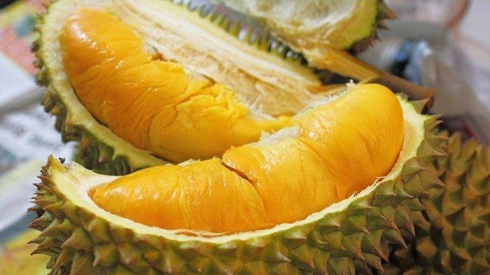 Cara Membuat Pancake Durian Yang Enak