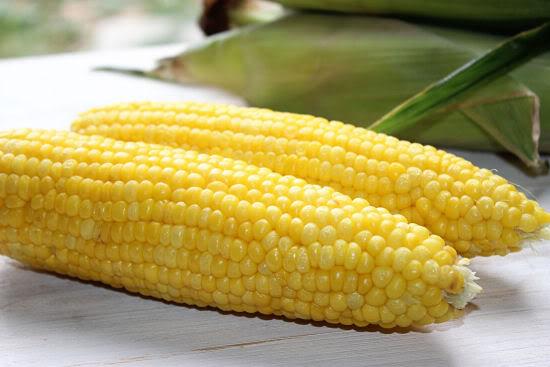 mamfaat jagung untuk kesehatan