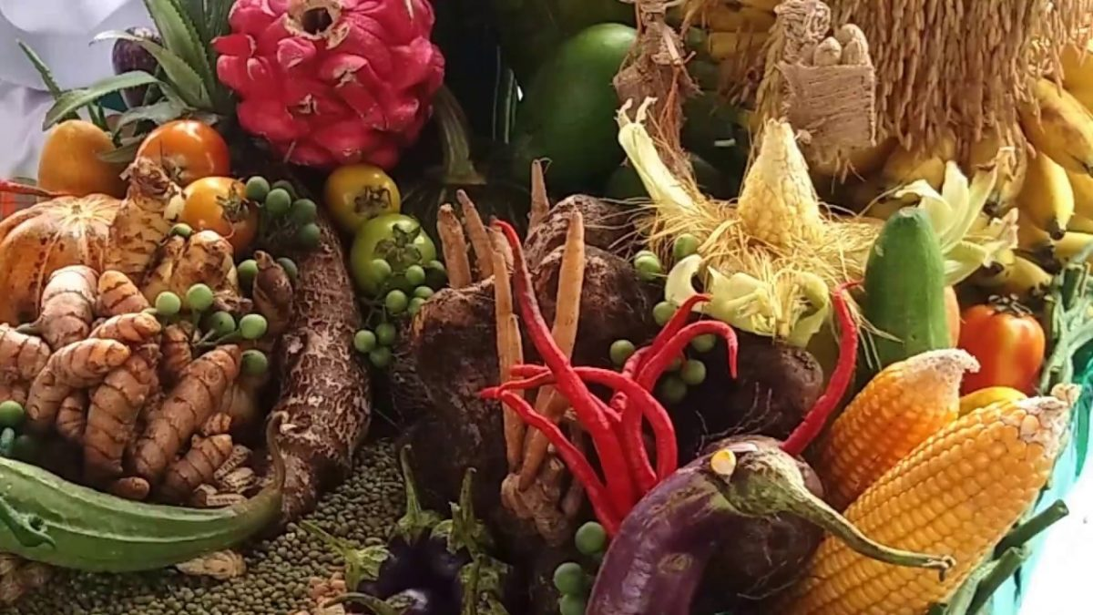 Pemasaran Produk Pertanian Yang Efisien Dan Menguntungkan