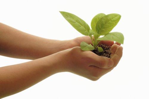 Tujuan Pengelolaan Lingkungan Hidup