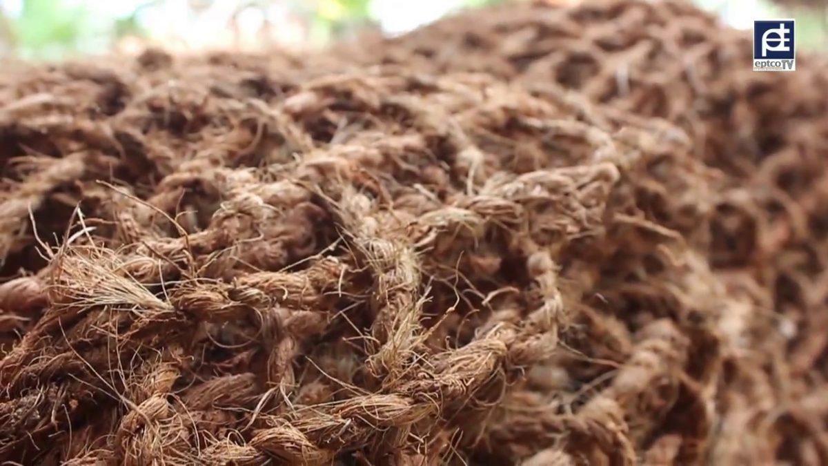 Yuk Kenali Cocomesh Sabut Kelapa Yang Punya Banyak Manfaat
